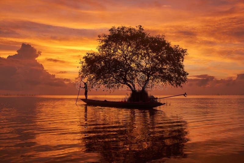 Un pescador en el barco del longtail y un fondo hermoso del cielo del agianst del árbol de corcho fotos de archivo libres de regalías