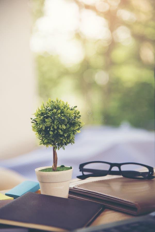 Un petit arbre décorer sur la table de fonctionnement avec une substance d'affaires image stock
