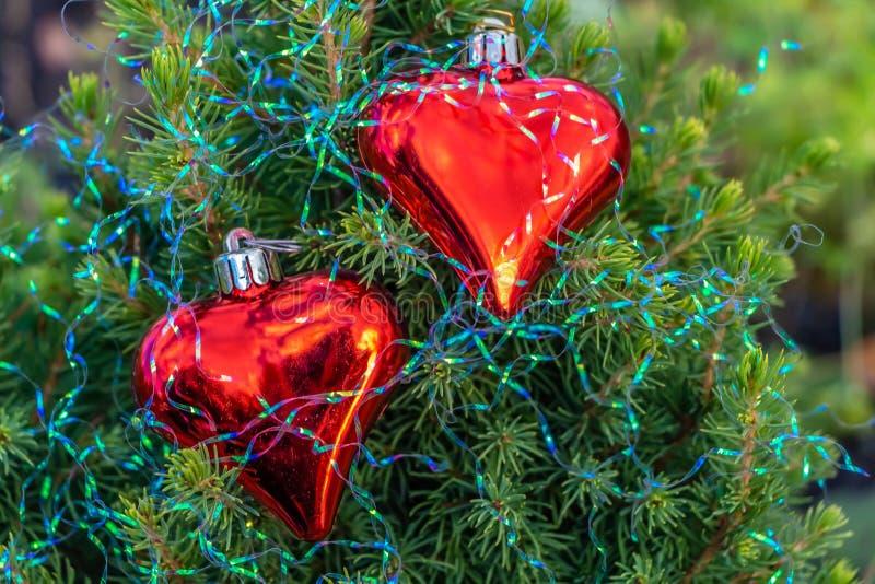 Un petit arbre de sapin vert avec deux coeurs en verre rouges avec des décorations de Noël d'arc-en-ciel images stock