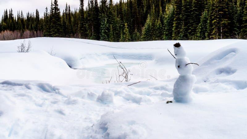 Un petit bonhomme de neige avec des brindilles comme bras et mousse comme cheveux images libres de droits