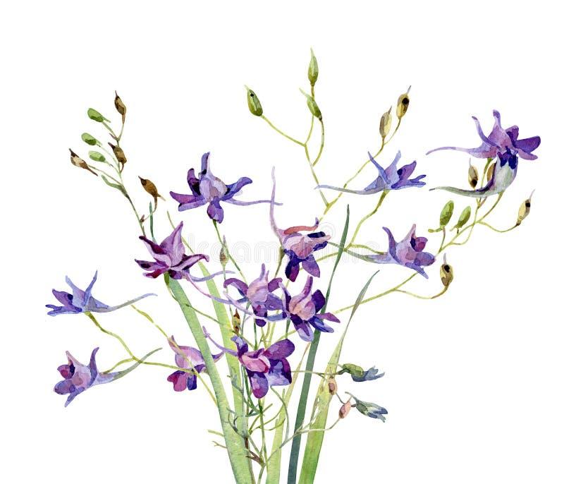 Un petit bouquet des fleurs sauvages bleues d'aquarelle illustration de vecteur