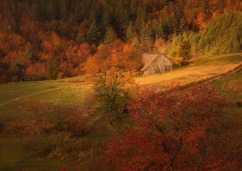 Un petit cottage en bois dans la montagne d'automne photos stock