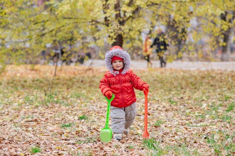 Un petit enfant avec un râteau et une pelle marche en parc image libre de droits