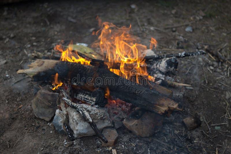 Un petit feu de camp composé des brindilles et des branches avec des roches l'entourant images stock