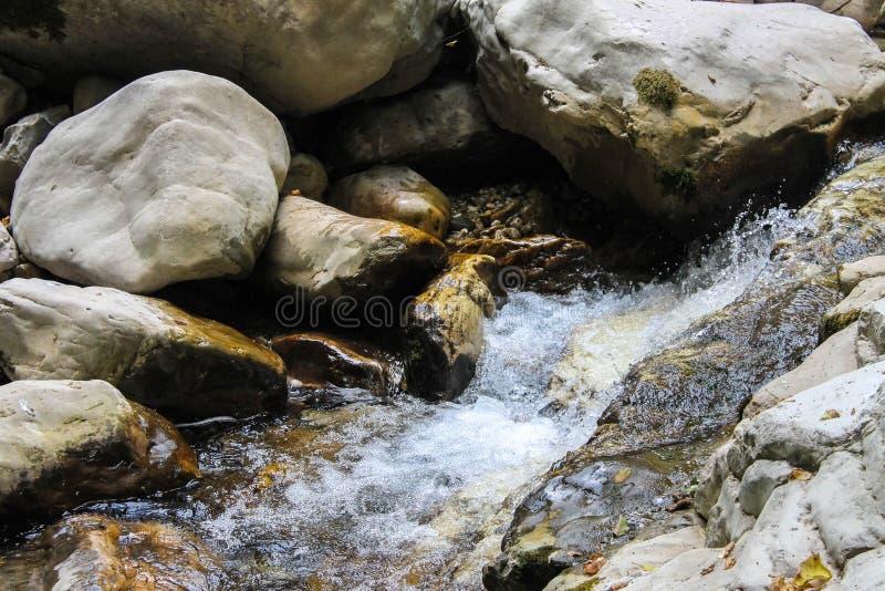 Un petit fleuve de montagne photo stock