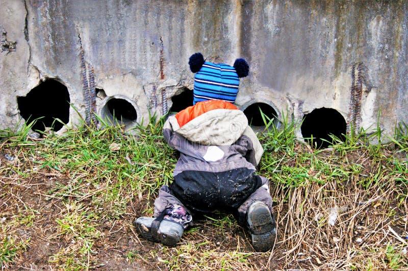 Un petit gar?on de deux ou trois ann?es se met ? genoux pour regarder par des trous dans le mur et pour alimenter les chatons images stock