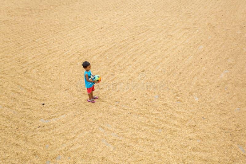 Un petit garçon jouant sur sécher la rizière photo stock