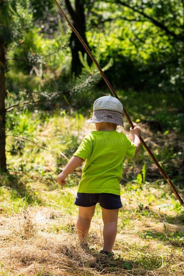 Un petit garçon trimardant et marchant à la forêt d'été image stock