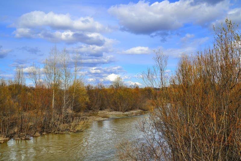 Un petit paysage de ressort de rivière photo libre de droits