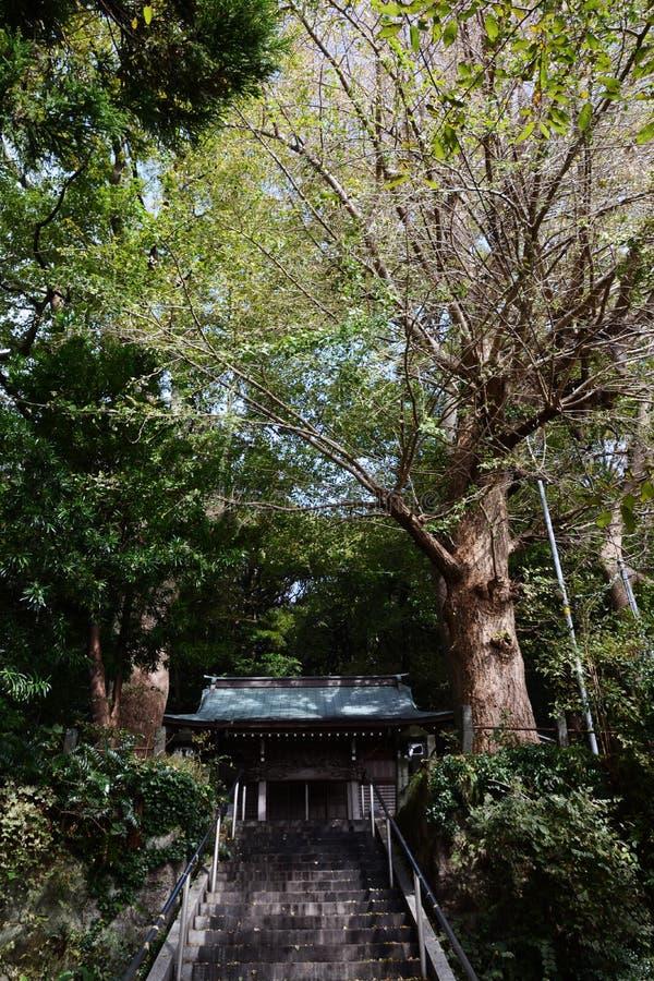 Un petit tombeau de Shinto images libres de droits