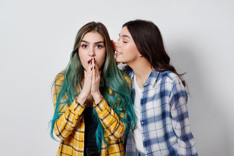 Un pettegolezzo femminile di due amici Una ragazza dice i segreti dell'altra in suo orecchio immagini stock libere da diritti