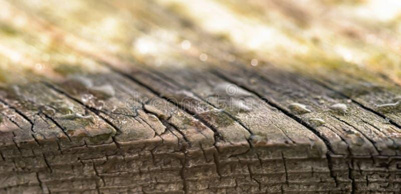 Un pezzo di legno molto vecchio con le gocce di acqua bandiera fotografia stock libera da diritti