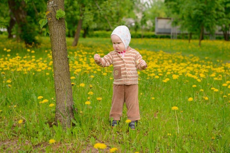 Un piccolo bambino tiene un opuscolo e lo studia fotografia stock libera da diritti
