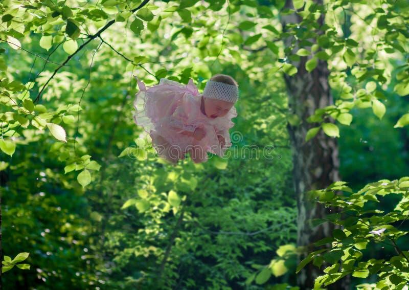 un piccolo bambino vola fra gli alberi in un rosa fotografia stock