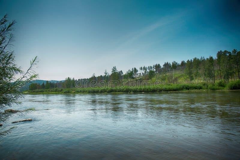 Un piccolo fiume che passa le colline coperte di foresta immagine stock libera da diritti