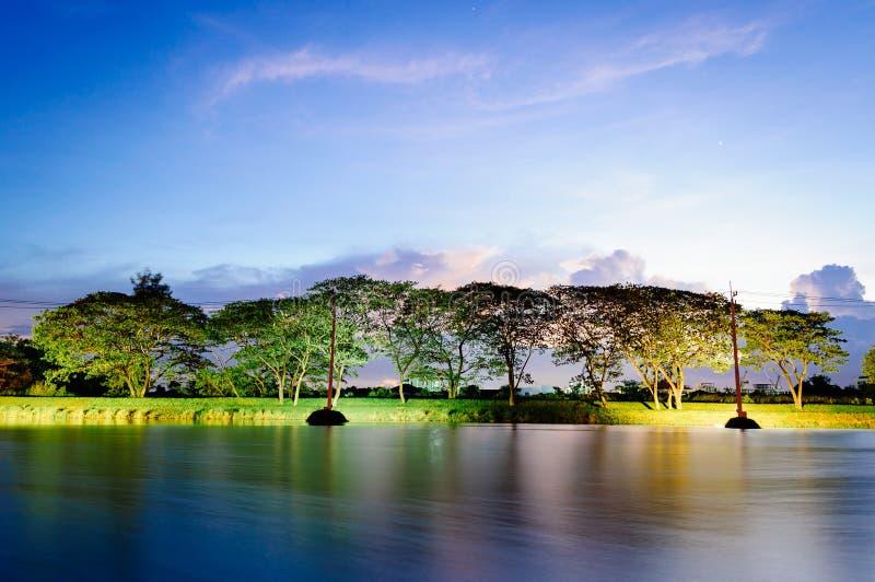 Un piccolo lago ed i grandi alberi nella sera all'estate fotografia stock libera da diritti