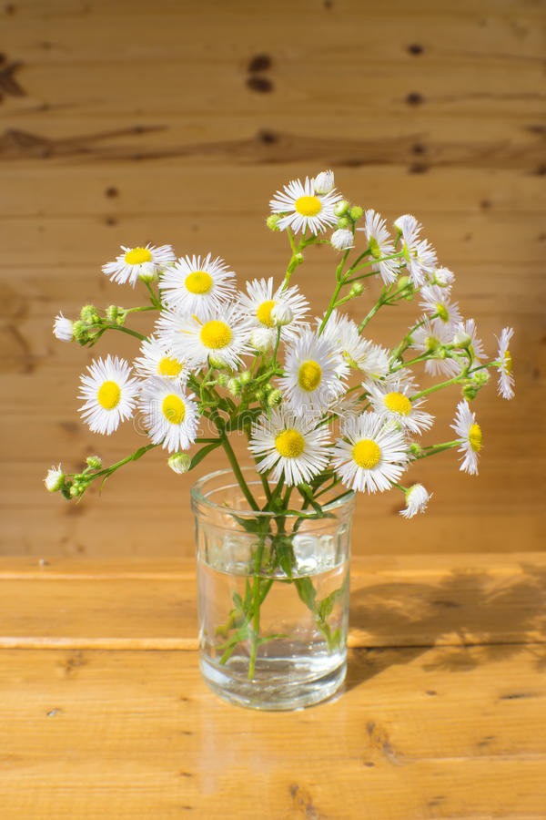Un piccolo mazzo dei fiori bianchi che stanno sul davanzale della finestra fotografie stock libere da diritti