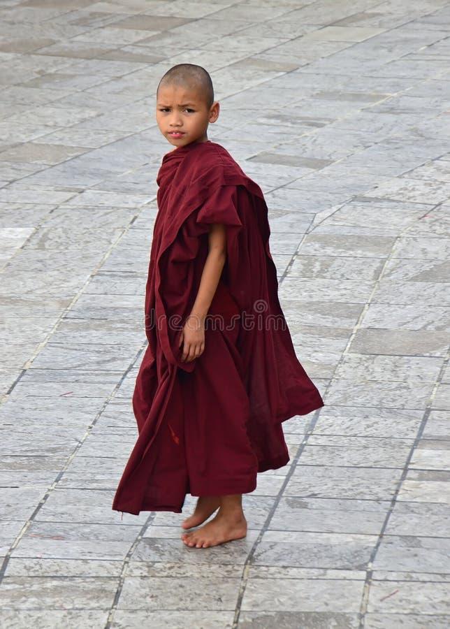 Un piccolo monaco buddista in abito marrone rossiccio che guarda profondamente da lontano fotografia stock libera da diritti