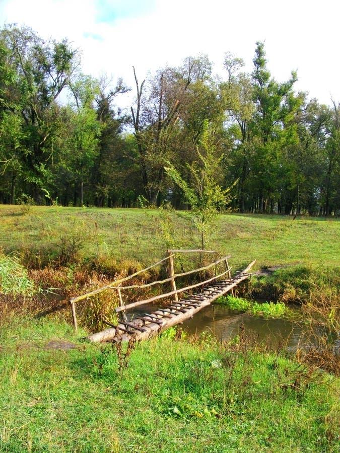 Un piccolo ponte di legno con un'inferriata attraverso il fiume in un bello paesaggio verde della foresta di estate immagine stock