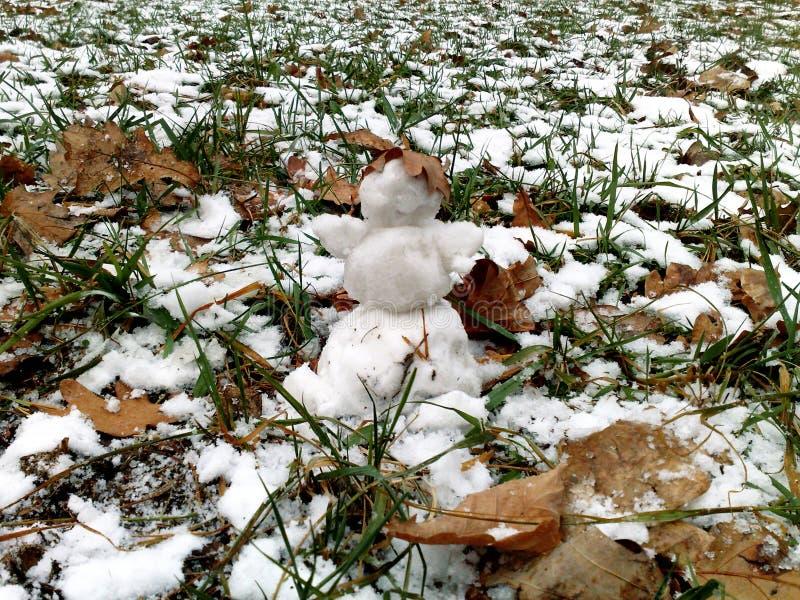 Un piccolo pupazzo di neve fotografia stock
