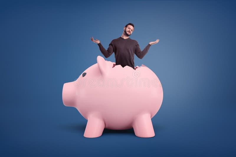 Un piccolo uomo barbuto con un aspetto confuso attacca fuori da una crepa in un porcellino salvadanaio rosa gigante immagini stock