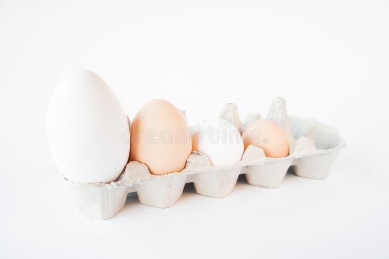 In un piccolo vassoio sono quattro uova immagini stock libere da diritti
