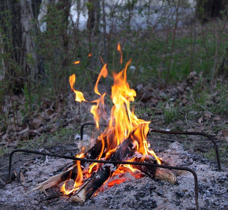 Un picnic con un fuoco di accampamento nel legno fotografie stock