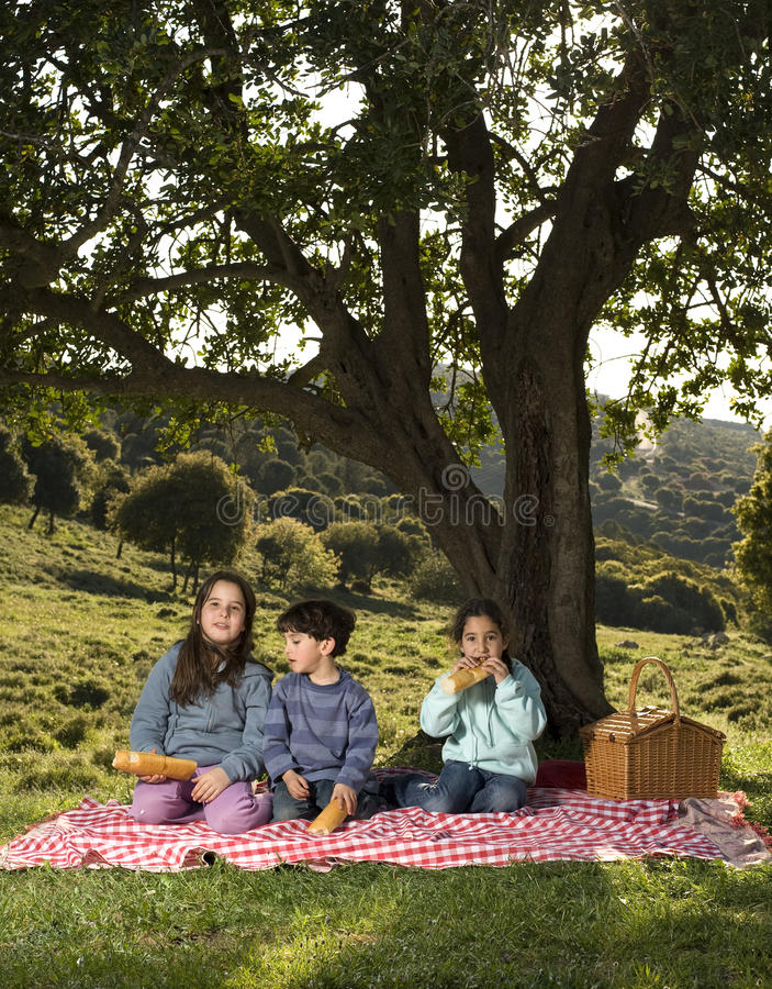 Un Picnic Dei Tre Bambini Immagini Stock