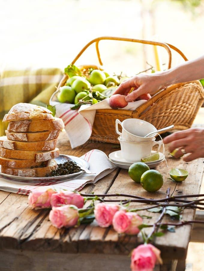 Un picnic di estate con tè fotografia stock libera da diritti