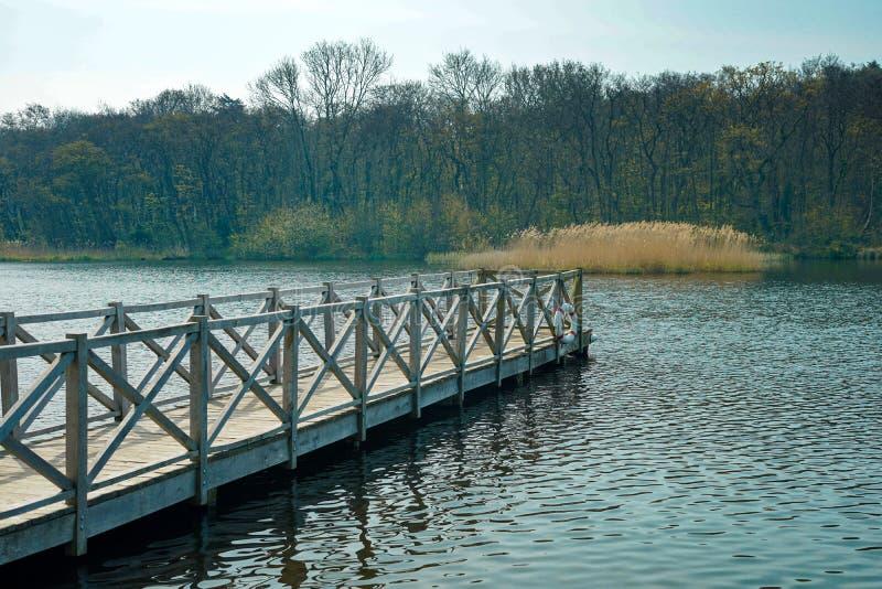 Un pilier menant à un lac avec une forêt photos libres de droits