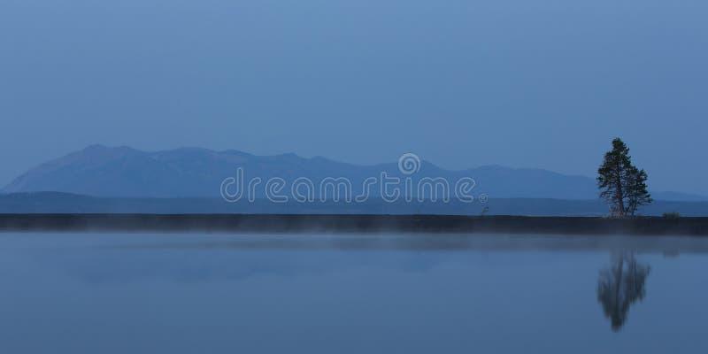 Un pin solitaire réfléchissant sur le lac Yellowstone tandis que les montagnes apparaissent indistinctement à l'arrière-plan en p photos stock
