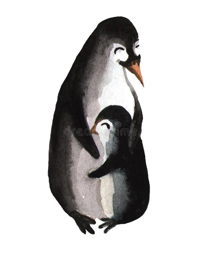 Un pinguino sveglio abbraccia una mamma del pinguino Illustrazione dell'acquerello su fondo bianco Carta di giorno del ` s della  royalty illustrazione gratis