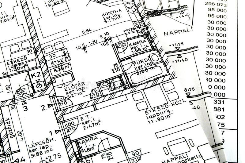 Un plan de suelo con una hoja imagen de archivo libre de regalías