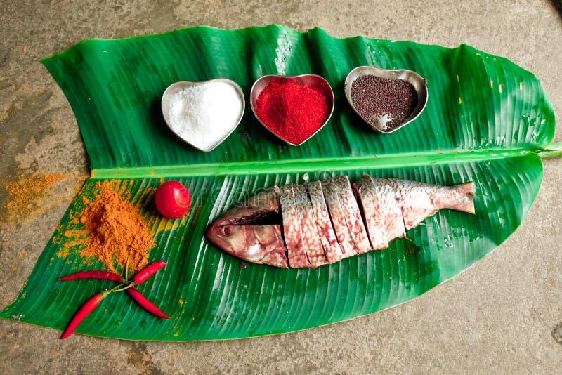 Un plat des poissons de hilsas image stock