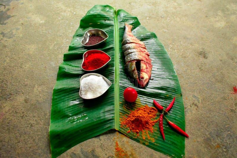 Un plato de los pescados de los hilsa imágenes de archivo libres de regalías