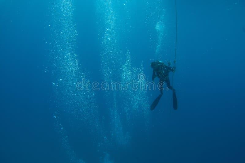 Un plongeur autonome se dirige vers la surface après un piqué image libre de droits