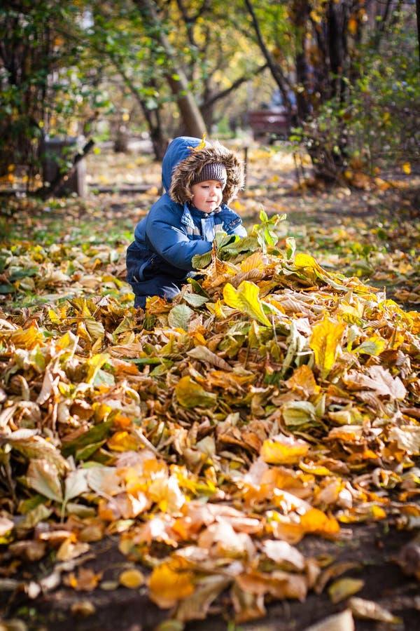 Un poco muchacho que juega con las hojas de otoño en la yarda foto de archivo