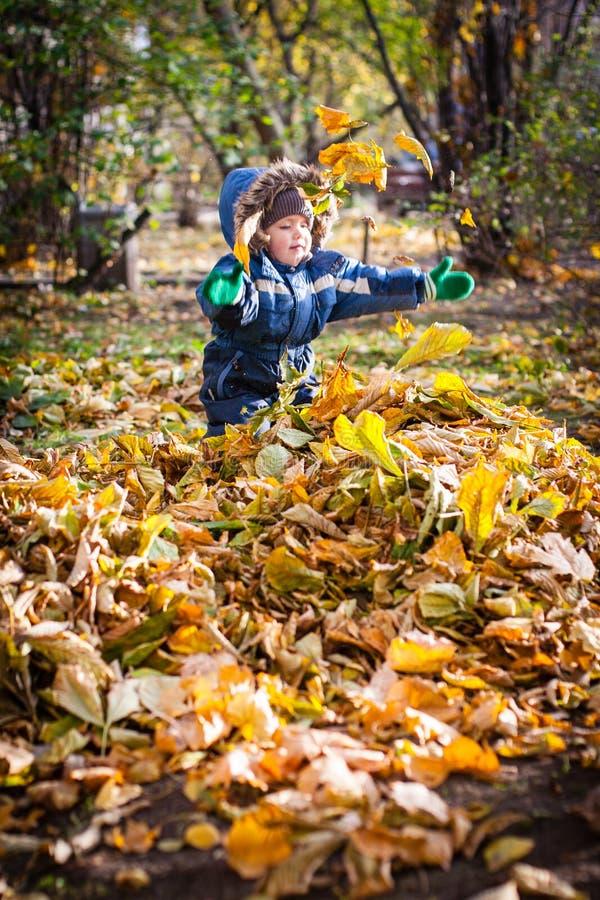 Un poco muchacho que juega con las hojas de otoño en la yarda fotos de archivo libres de regalías