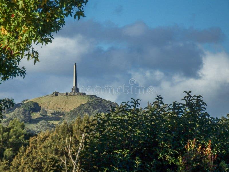 Un point de repère d'Auckland de colline d'arbre photos stock