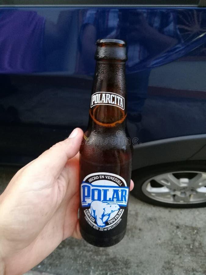 Un polarcita del nombre de la cerveza fría foto de archivo