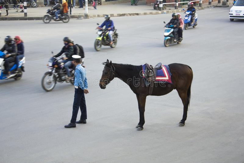Un policier de trafic se tient sur une route goudronnée avec son cheval brun dans la perspective d'a photographie stock libre de droits