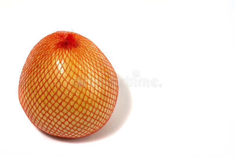Un pomelo maduro se empaqueta en una rejilla Pomelo aislado en un fondo blanco foto de archivo libre de regalías