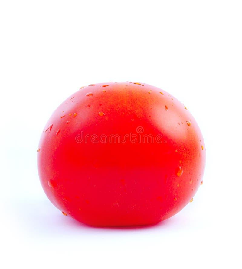 Un pomodoro. fotografia stock libera da diritti
