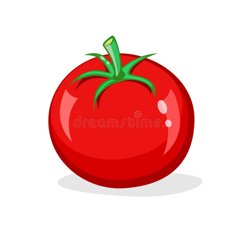 Un pomodoro rosso su fondo bianco Verdura lucida fresca Illustrazione del fumetto di vettore immagini stock libere da diritti
