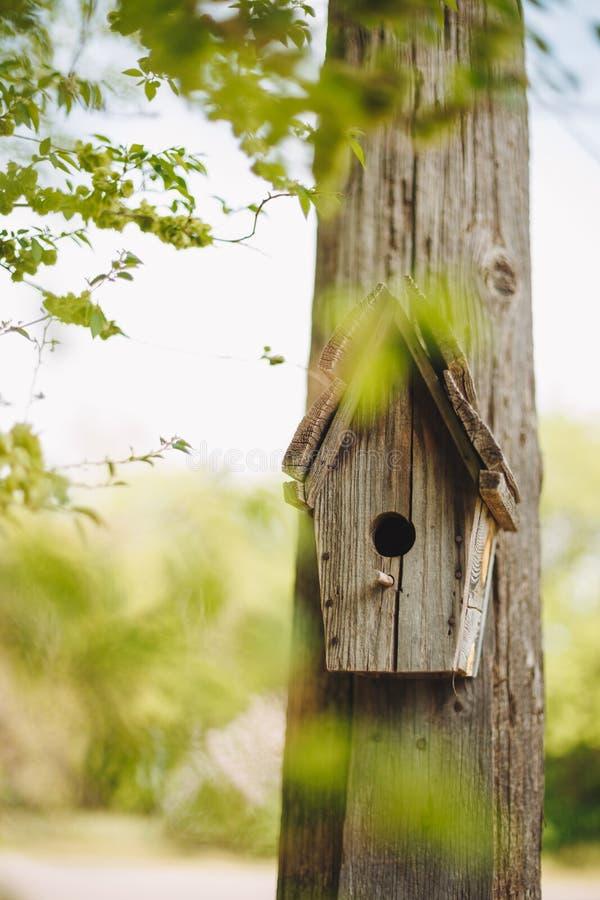 Un pondoir en bois accrochant sur un arbre photos libres de droits