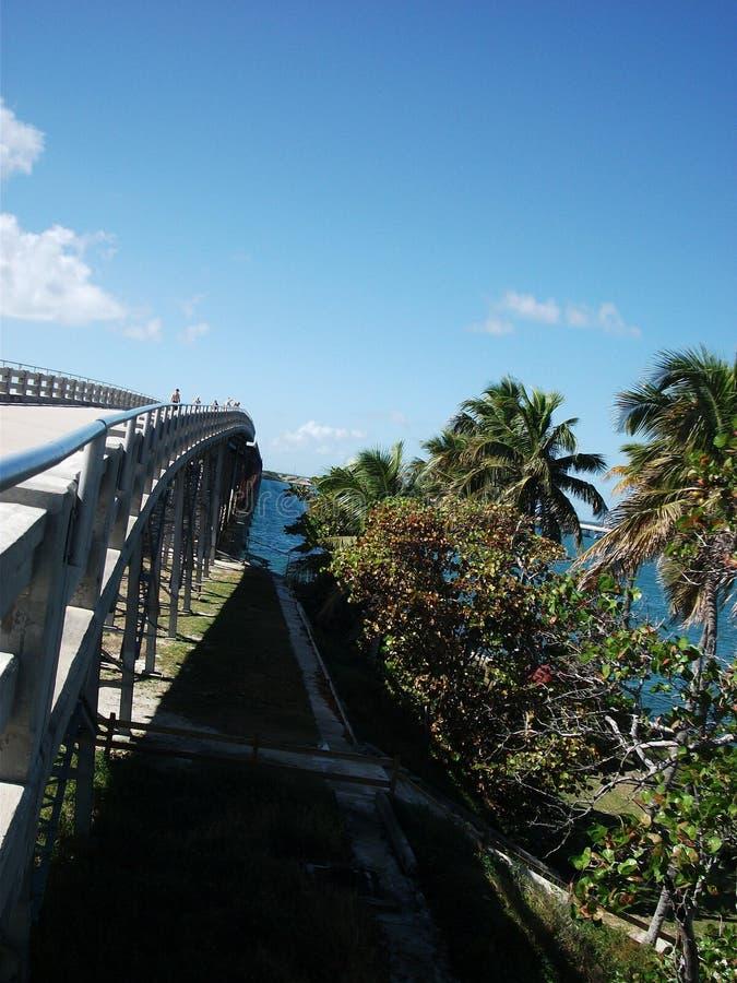 un pont au-dessus de l'océan avec des paumes photographie stock libre de droits
