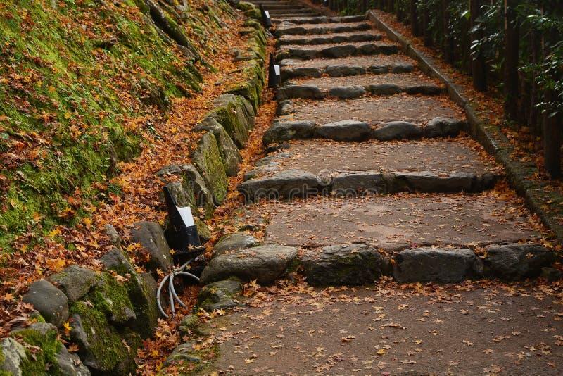 Un pont dans un jardin japonais pendant l'automne images libres de droits