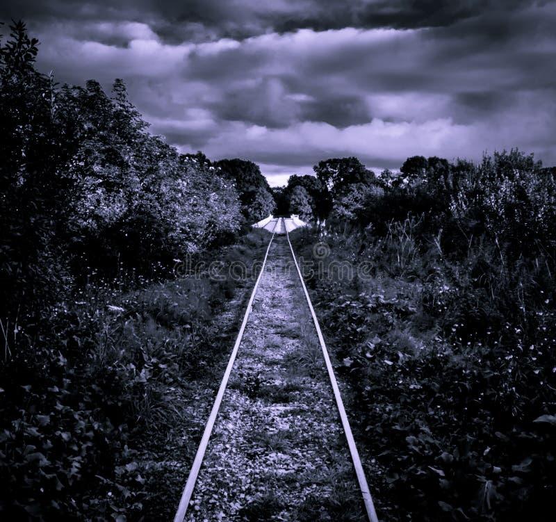 Un pont de chemin de fer sur un marais au-dessus du shannon de rivière photographie stock libre de droits