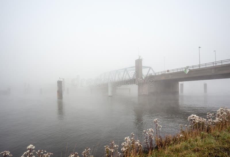 Un pont en froggy image stock