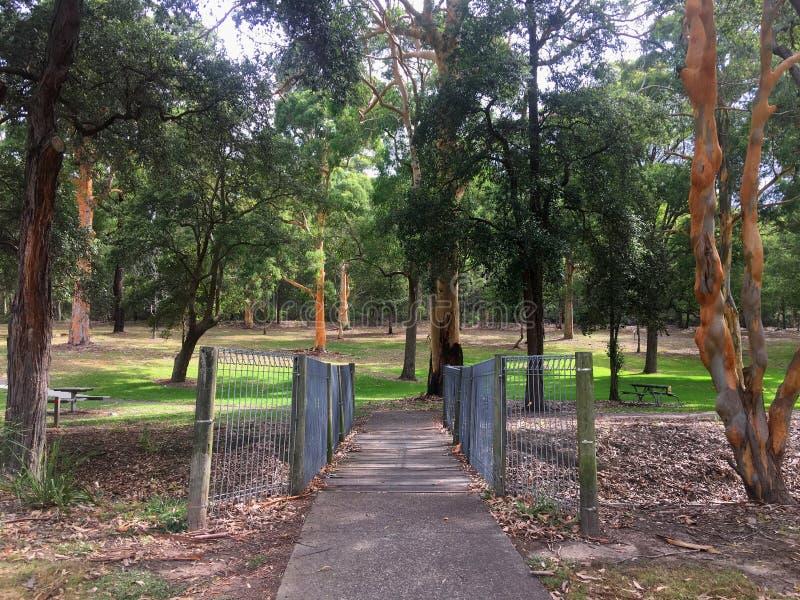 Un pont piétonnier au-dessus d'une crique en parc australien photo stock